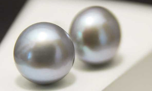 pearl-15